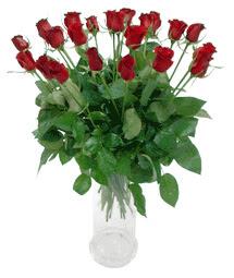 Diyarbakır hediye sevgilime hediye çiçek  11 adet kimizi gülün ihtisami cam yada mika vazo modeli