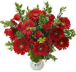 5 adet kirmizi gül 5 adet gerbera aranjmani  Diyarbakır kaliteli taze ve ucuz çiçekler
