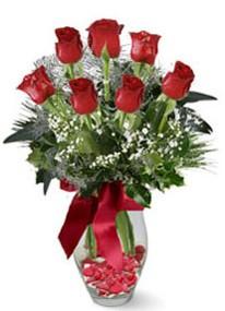 Diyarbakır İnternetten çiçek siparişi  7 adet kirmizi gül cam vazo yada mika vazoda