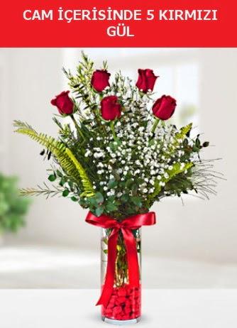 Cam içerisinde 5 adet kırmızı gül  Diyarbakır yurtiçi ve yurtdışı çiçek siparişi