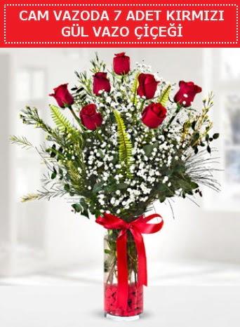 Cam vazoda 7 adet kırmızı gül çiçeği  Diyarbakır uluslararası çiçek gönderme