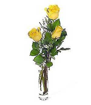 Diyarbakır İnternetten çiçek siparişi  3 adet kalite cam yada mika vazo gül