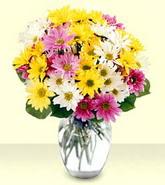 Diyarbakır İnternetten çiçek siparişi  mevsim çiçekleri mika yada cam vazo