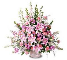 Diyarbakır yurtiçi ve yurtdışı çiçek siparişi  Tanzim mevsim çiçeklerinden çiçek modeli