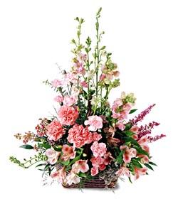 Diyarbakır çiçek mağazası , çiçekçi adresleri  mevsim çiçeklerinden özel