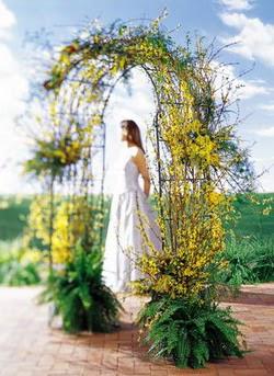 Diyarbakır online çiçekçi , çiçek siparişi  güller ve mevsim çiçegi