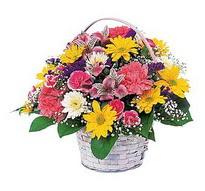 Diyarbakır çiçek servisi , çiçekçi adresleri  mevsim çiçekleri sepeti özel