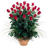 Diyarbakır çiçek satışı  10 adet kirmizi gül cam yada mika vazo