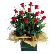 Diyarbakır online çiçekçi , çiçek siparişi  10 adet kirmizi gül özel mika yada cam vazoda