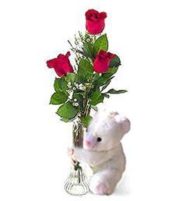 oyuncak ve 3 adet gül  Diyarbakır yurtiçi ve yurtdışı çiçek siparişi