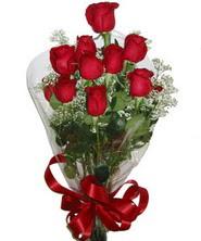 9 adet kaliteli kirmizi gül   Diyarbakır online çiçek gönderme sipariş