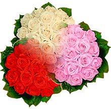 3 renkte gül seven sever   Diyarbakır çiçek servisi , çiçekçi adresleri