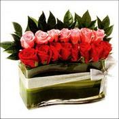 12 adet kirmizi gül ve cam   Diyarbakır güvenli kaliteli hızlı çiçek