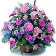 karisik mevsim kir çiçekleri  Diyarbakır uluslararası çiçek gönderme
