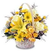 sadece sari çiçek sepeti   Diyarbakır uluslararası çiçek gönderme