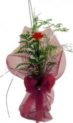 tek kirmizi gülden buket  Diyarbakır İnternetten çiçek siparişi