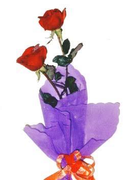 2  adet kirmizi gül buketi   Diyarbakır çiçek servisi , çiçekçi adresleri
