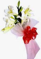 Diyarbakır çiçek servisi , çiçekçi adresleri  ince vazoda gerbera ve ayi