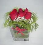 6 adet kirmizi gül camdadir   Diyarbakır 14 şubat sevgililer günü çiçek