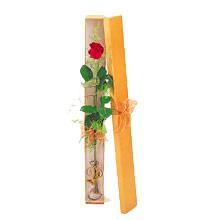 ince  kutuda  1  gül   Diyarbakır 14 şubat sevgililer günü çiçek