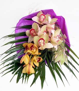 Diyarbakır çiçekçi telefonları  1 adet dal orkide buket halinde sunulmakta