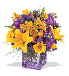 Diyarbakır internetten çiçek satışı  cam içerisinde kir çiçekleri demeti