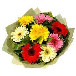 9 adet karisik gerbera demeti  Diyarbakır internetten çiçek satışı