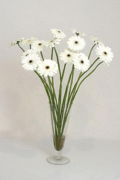 Diyarbakır internetten çiçek satışı  cam vazo içerisinde 17 adet sade gerbera