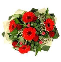 Diyarbakır çiçek mağazası , çiçekçi adresleri   5 adet kirmizi gül 5 adet gerbera demeti