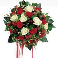 Diyarbakır çiçek mağazası , çiçekçi adresleri  6 adet kirmizi 6 adet beyaz ve kir çiçekleri buket