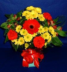 Diyarbakır çiçek mağazası , çiçekçi adresleri  sade hos orta boy karisik demet çiçek