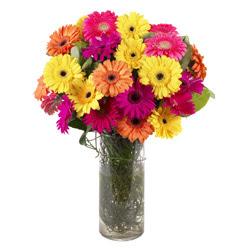 KARISIK GERBERALARDAN CAM VAZO TANZIMI  Diyarbakır internetten çiçek siparişi