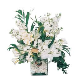 Diyarbakır İnternetten çiçek siparişi  sadece beyazlardan olusmus mevsim cam yada mika tanzim