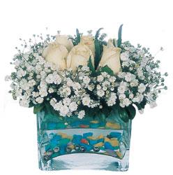 Diyarbakır güvenli kaliteli hızlı çiçek  mika yada cam içerisinde 7 adet beyaz gül
