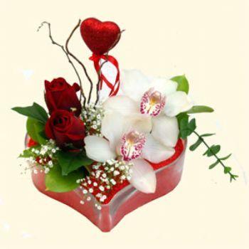Diyarbakır hediye çiçek yolla  1 kandil orkide 5 adet kirmizi gül mika kalp