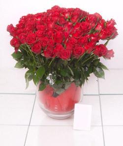 Diyarbakır çiçek gönderme  101 adet kirmizi gül