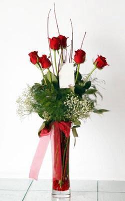 Diyarbakır çiçekçi telefonları  6 adet kirmizi gül ve cam yada mika vazo