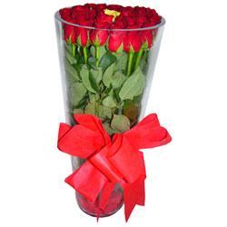 Diyarbakır çiçekçi mağazası  12 adet kirmizi gül cam yada mika vazo tanzim