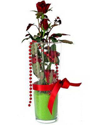 Diyarbakır çiçek yolla  Cam yada mika içerisinde 9 adet kirmizi gül - sevdiklerinize özel