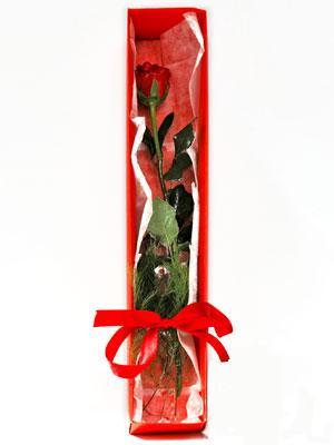 Diyarbakır çiçek siparişi vermek  1 adet kutuda gül