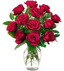 Diyarbakır çiçek yolla  1 düzine kirmizi gül sevenlere özel vazo gülleri
