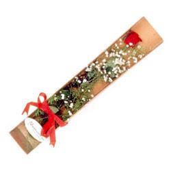 Diyarbakır çiçek servisi , çiçekçi adresleri  Kutuda tek 1 adet kirmizi gül çiçegi