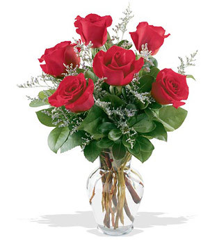Diyarbakır çiçekçi telefonları  cam yada mika vazoda 6 adet kirmizi gül