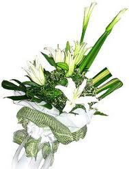 Diyarbakır internetten çiçek siparişi  3 dal kazablanka çiçegi ve yesillikler