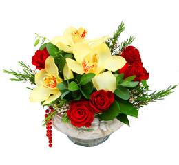 Diyarbakır anneler günü çiçek yolla  1 adet orkide 5 adet gül cam yada mikada