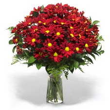 Diyarbakır 14 şubat sevgililer günü çiçek  Kir çiçekleri cam yada mika vazo içinde