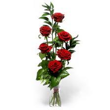 Diyarbakır çiçek satışı  mika yada cam vazoda 6 adet essiz gül
