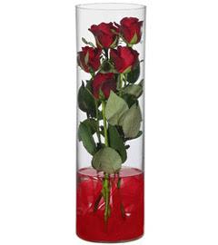 cam içerisinde 7 adet kirmizi gül  Diyarbakır çiçek yolla , çiçek gönder , çiçekçi
