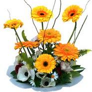 camda gerbera ve mis kokulu kir çiçekleri  Diyarbakır hediye sevgilime hediye çiçek