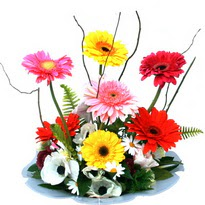 Diyarbakır kaliteli taze ve ucuz çiçekler  camda gerbera ve mis kokulu kir çiçekleri